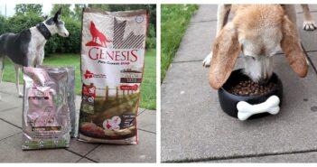 GENESIS und PLATINUM Trockenfutter für erwachsene und alte Hunde im Test